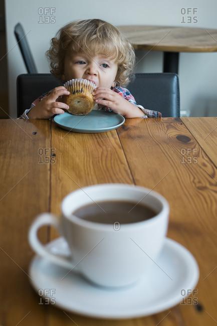 Little boy eating a blueberry muffin