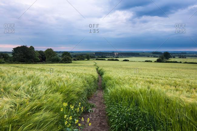 Cuddesdon, Oxfordshire, England, United Kingdom