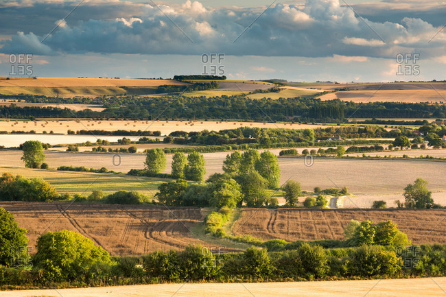 Wittenham Clumps, Thames Valley, Oxfordshire, England, United Kingdom