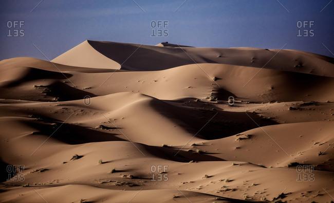 Golden sand dunes in the desert of Morocco