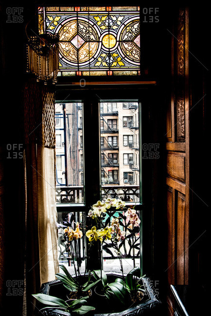 New York, NY, USA - July 29, 2014: Orchids in front of a stained glass window