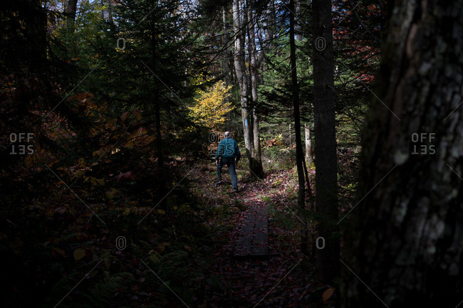 Older man hiking in the woods
