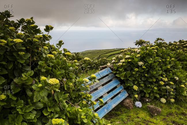 Wood gate at Corvo island, Azores, Portugal