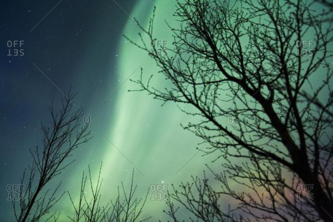 Aurora Borealis lights over Þingvellir