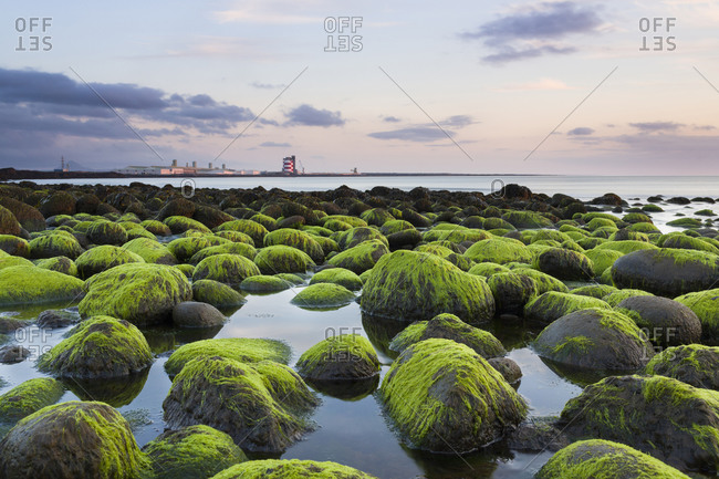 Sunset over mossy boulders, Iceland