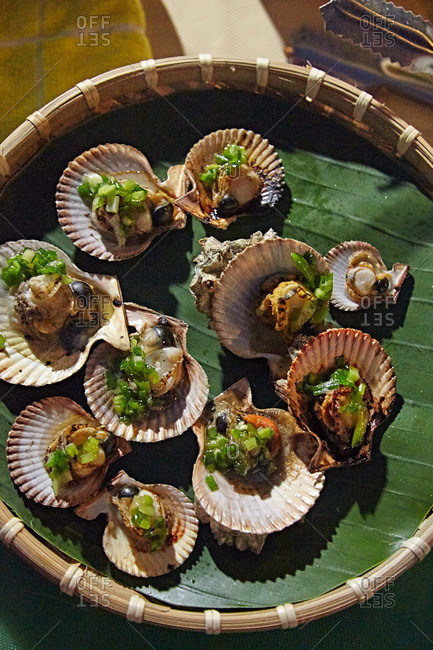 Fancy appetizers served in sea shells