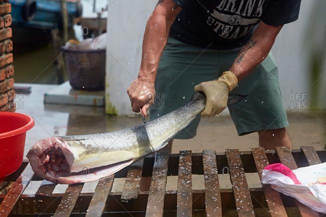 Man skinning a large fish
