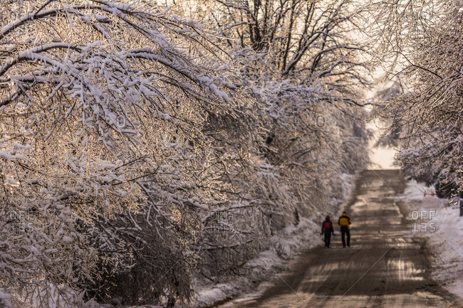 People walking on a wintry road in Ontario, Canada