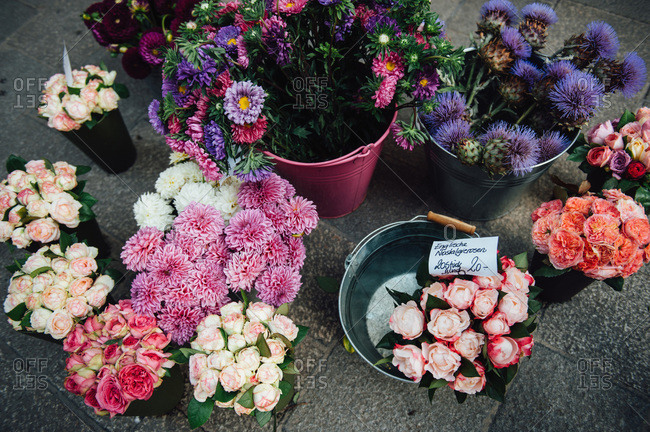 Variety of fresh-cut flowers for sale
