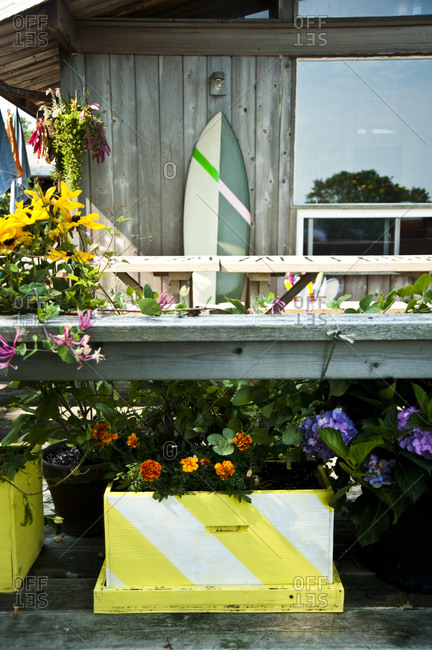 Montauk, New York - July 23, 2011: Plantings at Chandelier Creative's Surf Shack