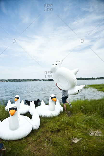 Inflatable swans
