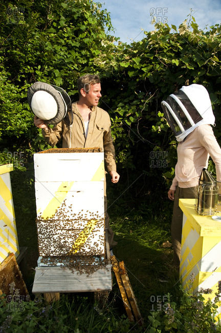 Montauk, New York - July 23, 2011: Chandelier Creative founder Richard Christiansen working at the Surf Shack apiary