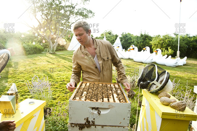 Montauk, New York - July 23, 2011: Richard Christiansen, founder of Chandelier Creative, with beehives at the Surf Shack apiary
