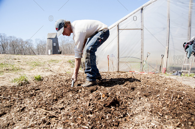 Shelter Island, New York - April 6, 2013: Lev Darkhovski gardening in front of a greenhouse at Sylvester Manor