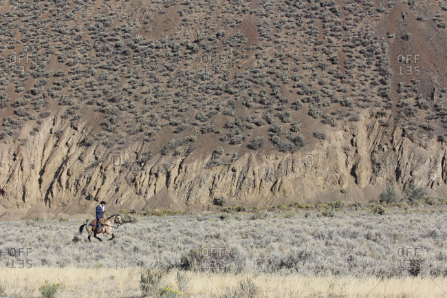 Man riding horse in field below mountains