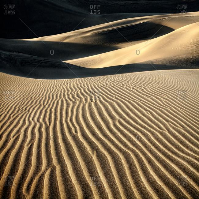 Landscape of desert sand dunes