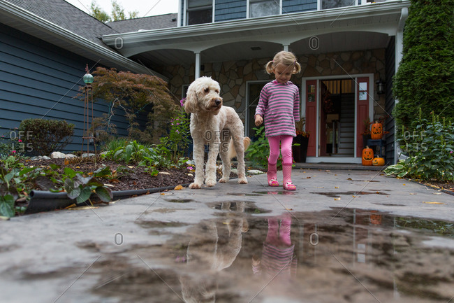 Young girl with dog on front walk of home with puddles