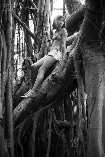Teenaged girl sitting in tree branches