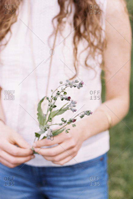 Close up of a woman holding a wild flower.