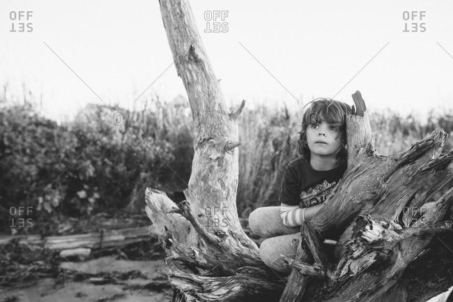 Boy sitting in a dead tree