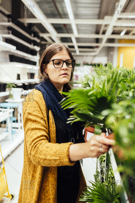 Woman looking at plants in housewares store