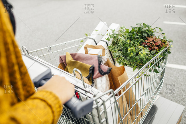 Elevated view of a woman's shopping cart filled with plants and her housewares purchases