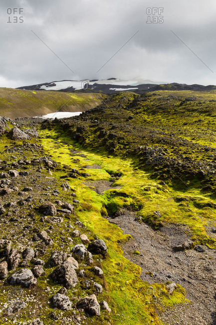 Mossy hillside of volcanic rock leading toward snowy mountains in distance