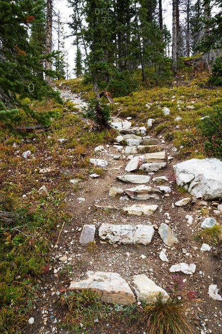 Stone steps on a mountain hiking path