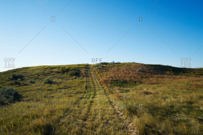 Tire tracks on a grassy rural hill