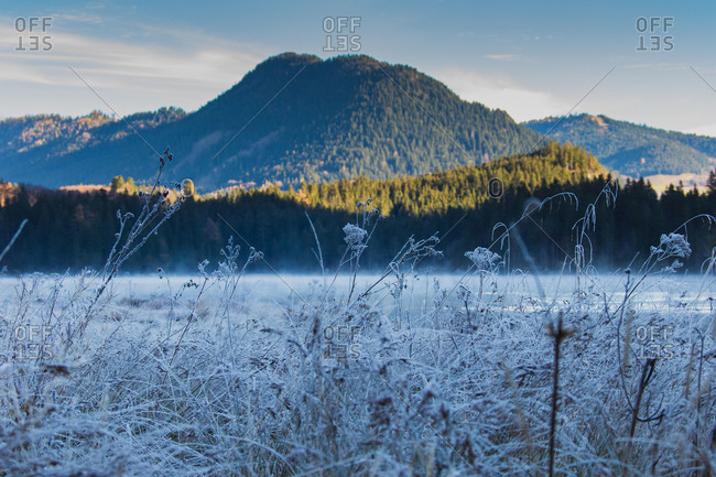 Frosty morning in the Bavarian Alps