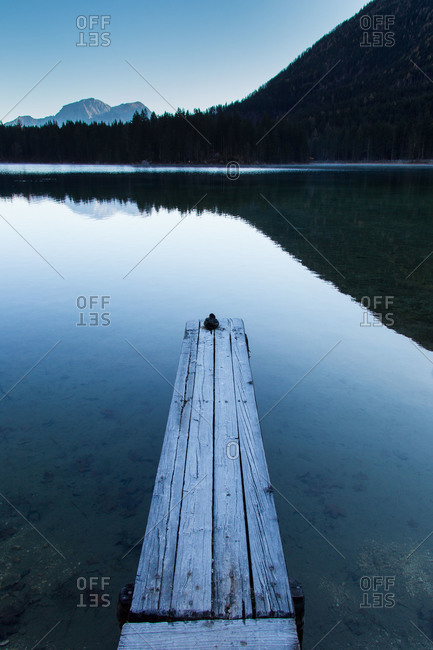 Bird huddled on a frosty pier in the Bavarian Alps
