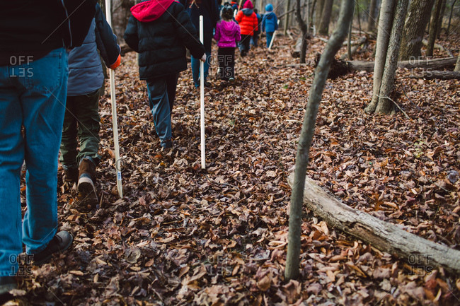 Children on a school outing in nature