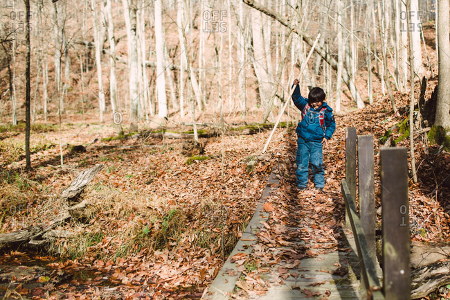 Boy on a nature hike with his school