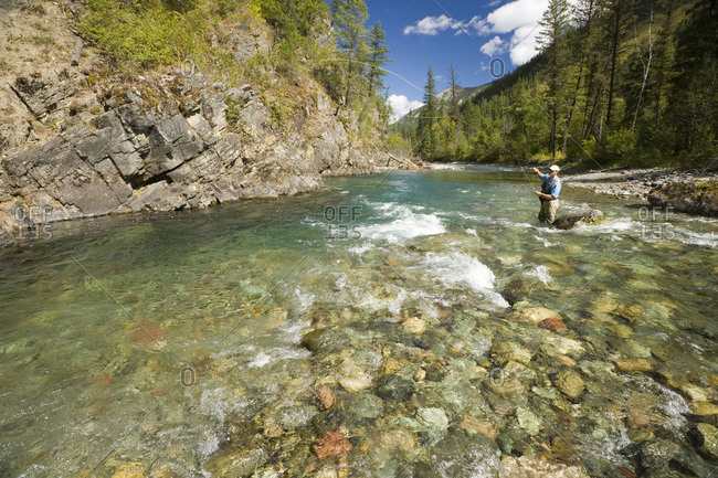 Man fly-fishing on Elk River tributary, BC, Canada