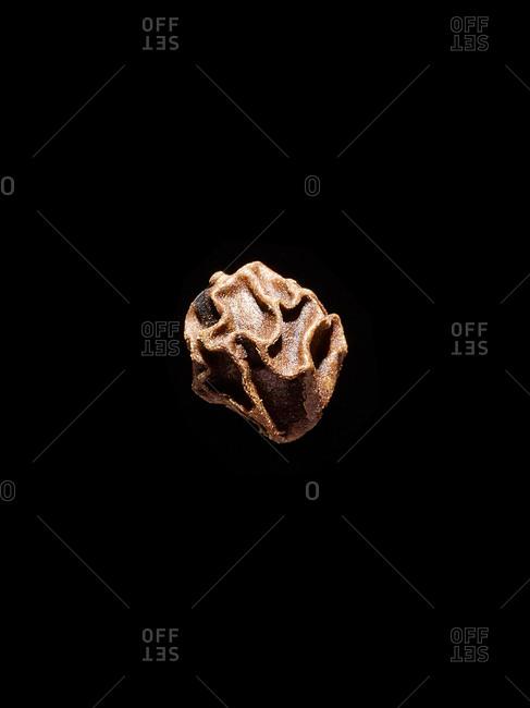 Close up of a single peppercorn