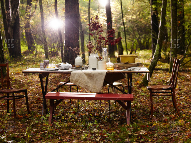 Table set in the woods for a fall dinner party
