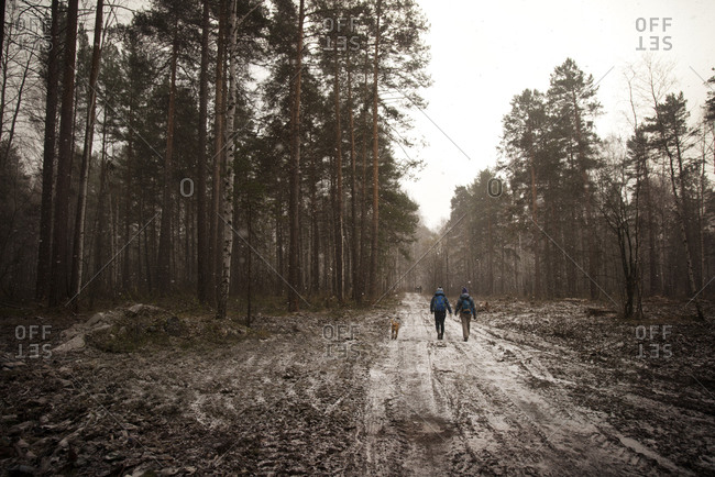 Hikers on a muddy track in the snow