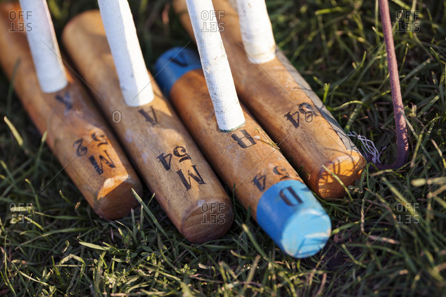 Different sized polo mallets