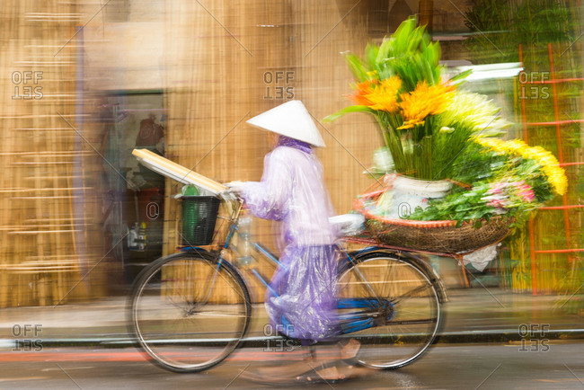 A flower seller pushes her bicycle along the street with a basket full of fresh flowers in Hanoi, Vietnam