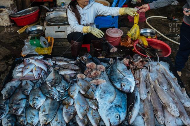 Woman selling fish on Phu Quoc Island, Vietnam