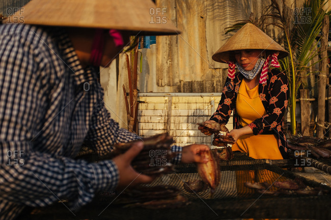 Phu Quoc, Vietnam - November 10, 2015: Women lay out fish to dry, Vietnam