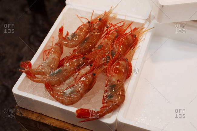 Fresh whole prawns on tray of ice