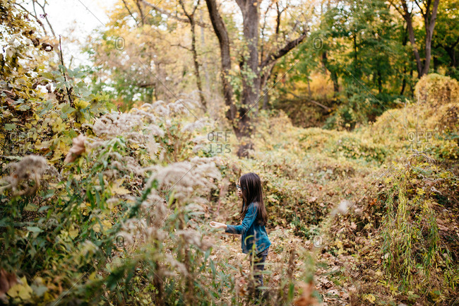 Young girl walking in the forest during fall