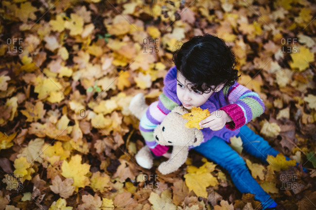 Little girl sitting in fallen leaves with her teddy bear