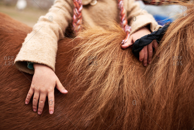 Girl with hands on young horse