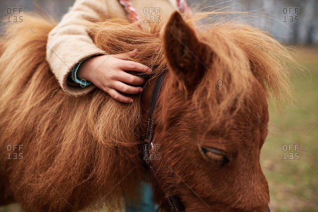 Girl embracing a young horse