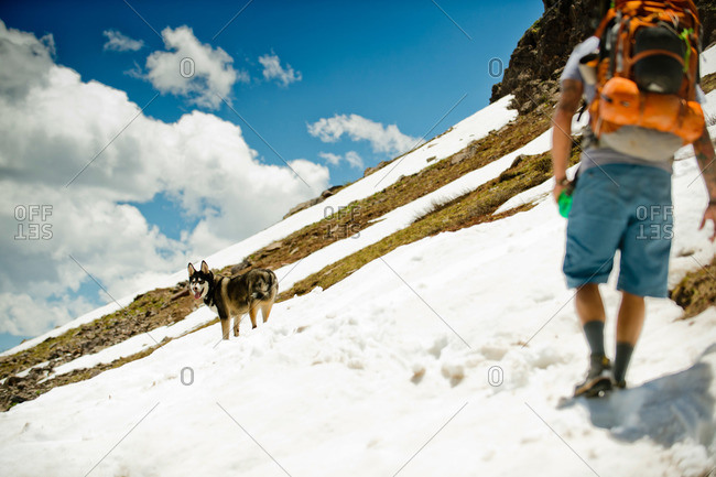 A hiker and his dog
