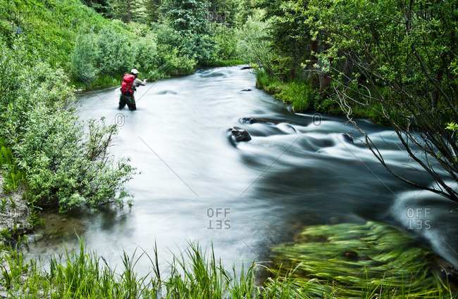 A fly fisherman fishing an alpine stream