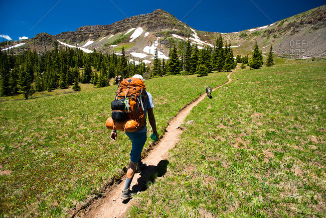 A backpacker hikes through the Flat Tops Wilderness in Yampa, Colorado on a sunny day.