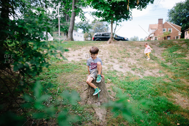 Boy climbing on a tree stump in the summer